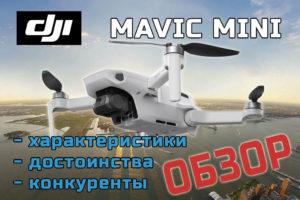 Полный обзор DJI Mavic Mini
